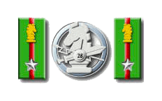 28° Reggimento Pavia